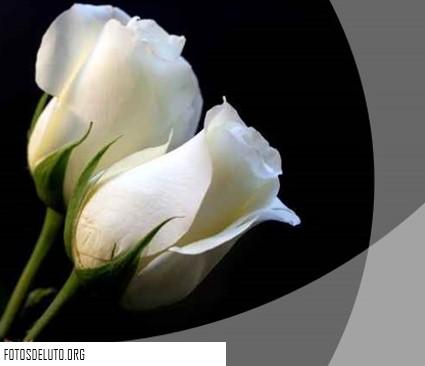 imagenes de luto para perfil de facebook | Fotos para
