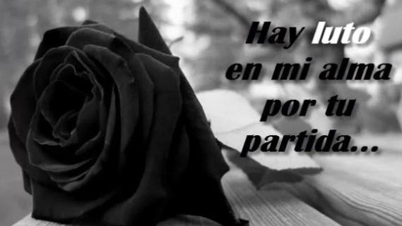 Rosas Negras Con Frases De Luto Para Expresar Duelo Fotos De Luto