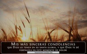 Imágenes con frases de condolencias
