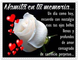 Fotos de luto para mama