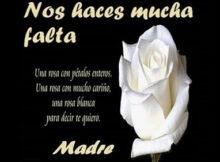 descansa en paz mama