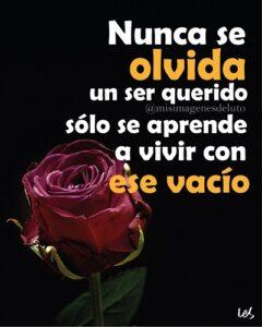 luto nuca te olvidare con rosa