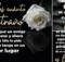 imagenes de luto con rosas